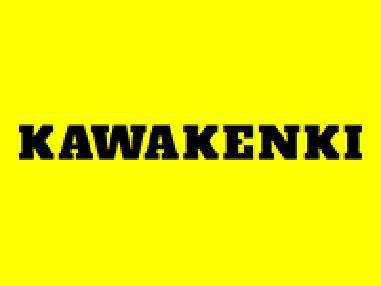 Kawakenki