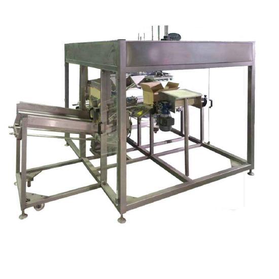 MVS Machinery Carton Boxing Machine