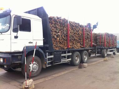 Vozidlo na přepravu dřeva - MAN 33.464