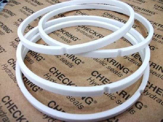 Hyundai PTFE Ring
